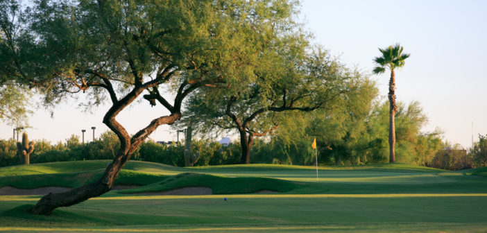 Claim It In Rio – Rio Verde Country Club Community, an Inviting and Appealing Enclave for Active Adults